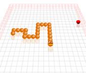 3D Worm