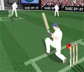 Cricket Challinge...