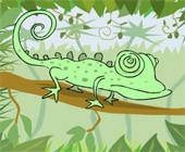 Frame Lizard