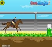 Horse Jumping Cha...