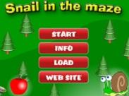 Snail Maze